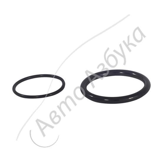 Уплотнительные кольца дроссельной заслонки К4М (L1.6, V16) на ВАЗ Ларгус - фото 12304