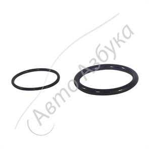 Уплотнительные кольца дроссельной заслонки К4М (L1.6, V16) на ВАЗ Ларгус